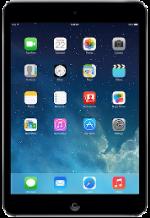 Apple iPad mini 2 Gray