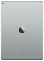 Apple iPad Pro Gray