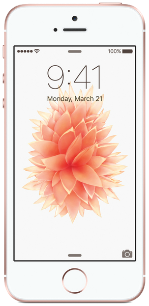 Apple iPhone SE Rose
