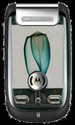 Motorola A1200 Ming Black