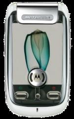Motorola A1200 Ming White