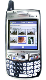 Palm Treo 700wx Gray