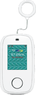 Sprint WeGo White
