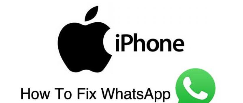 WhatsApp Not Working On iPhone And How To Fix | Wirefly