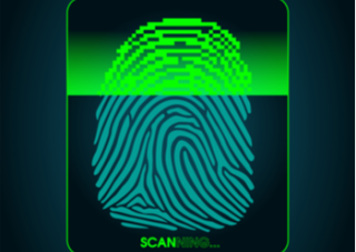 Synaptics Announces Mass Production of In-Display Fingerprint Scanners