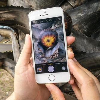 Flickr: iPhone is the Most Popular Camera Today